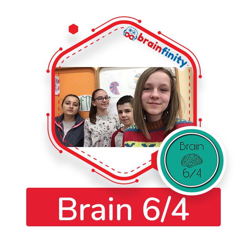 Brain 6/4