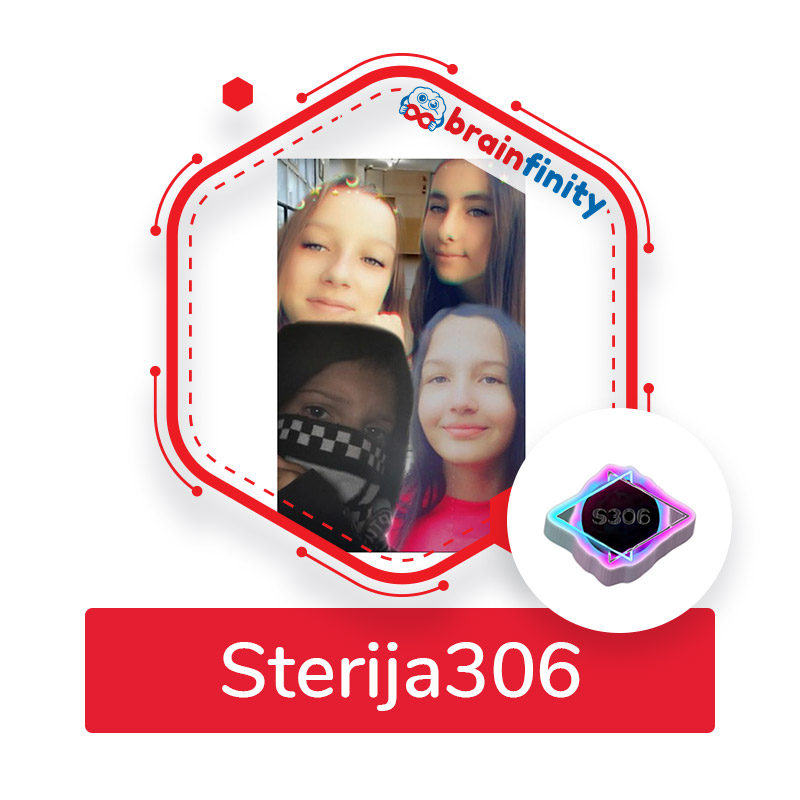 sterija 306