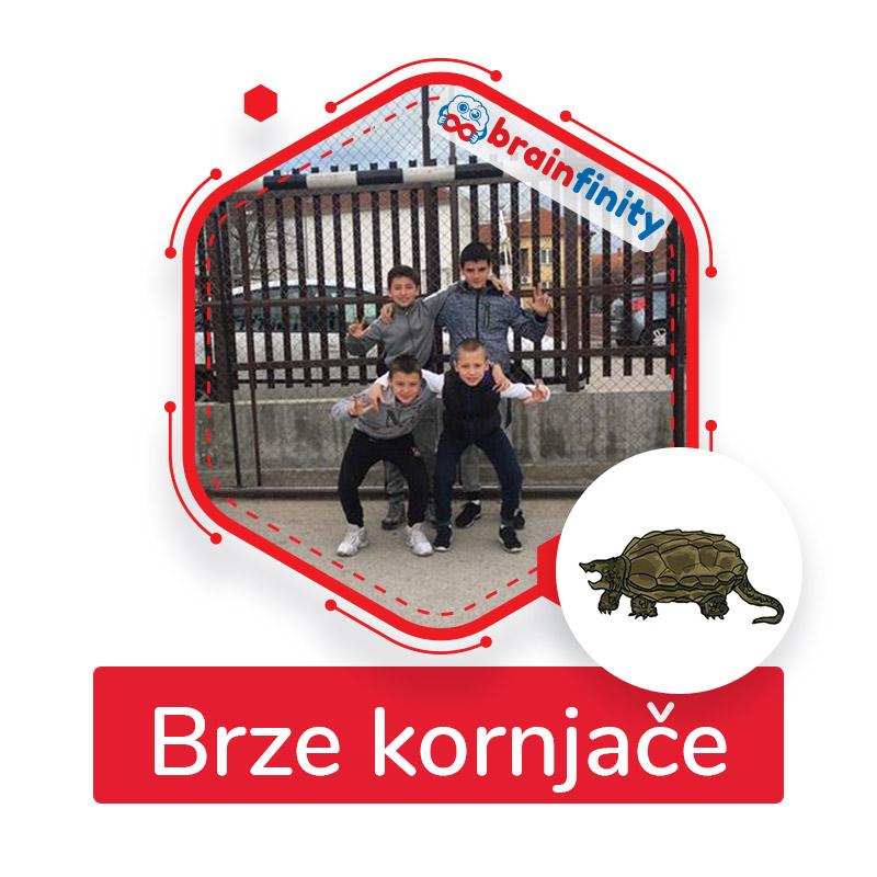 brze kornjače