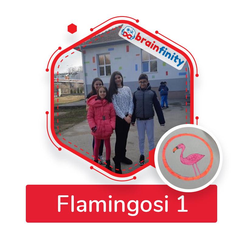 flamingosi 1